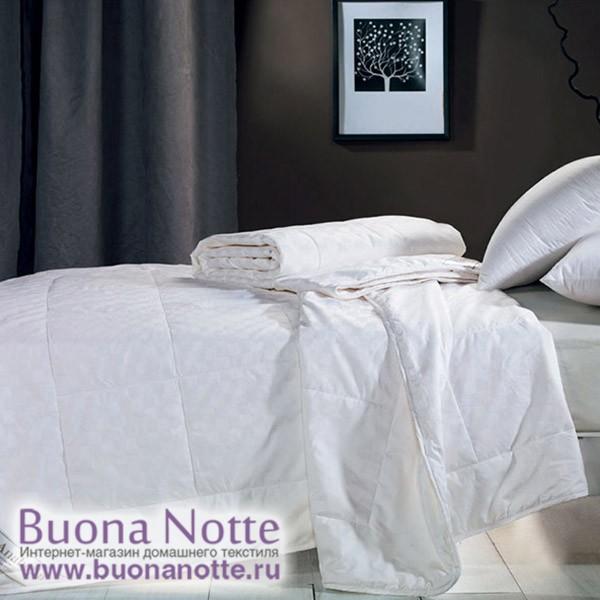 Шелковое теплое одеяло Asabella CS-3Z (размер 200х220 см)