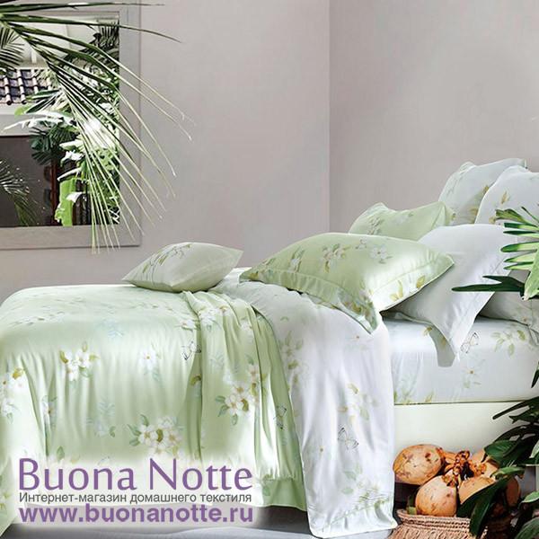 Комплект постельного белья Asabella 1058 (размер евро)