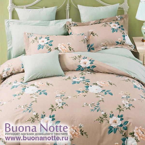 Комплект постельного белья Asabella 1105 (размер евро)