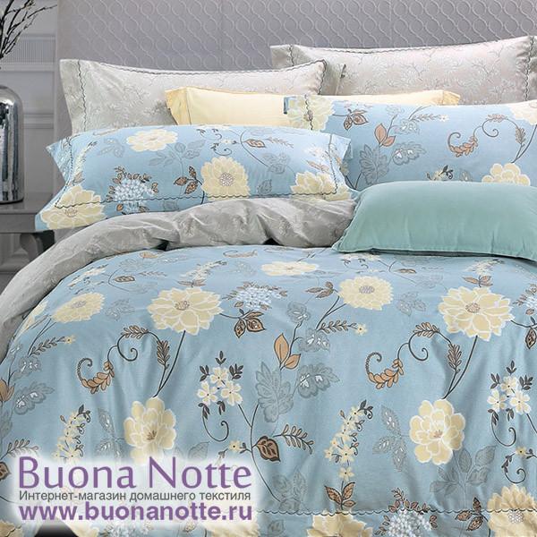 Комплект постельного белья Asabella 1126 (размер евро)