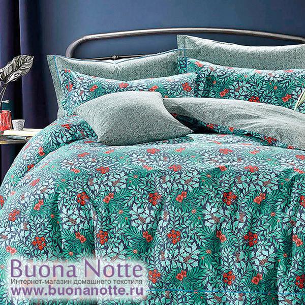 Комплект постельного белья Asabella 1127 (размер евро)