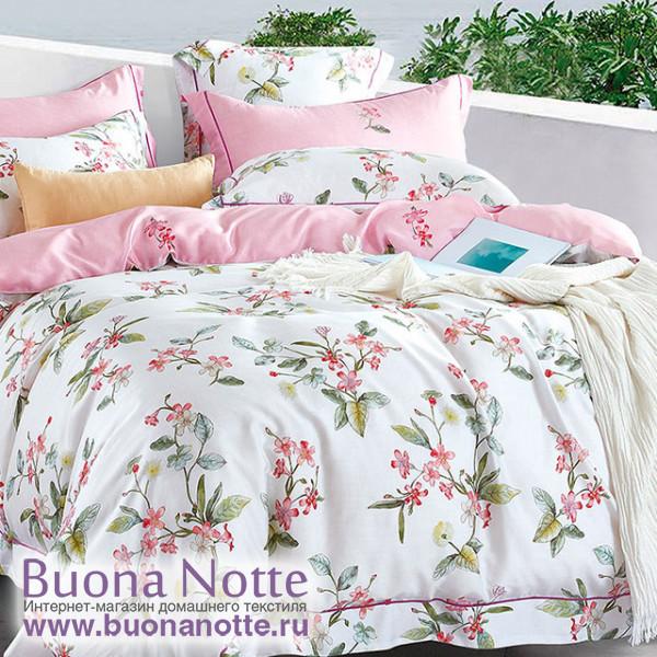 Комплект постельного белья Asabella 1169 (размер евро)