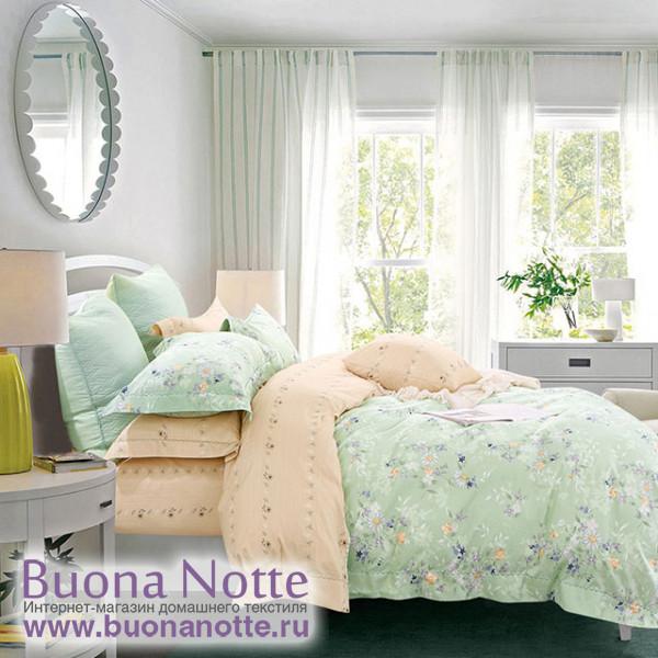 Комплект постельного белья Asabella 1269 (размер евро)