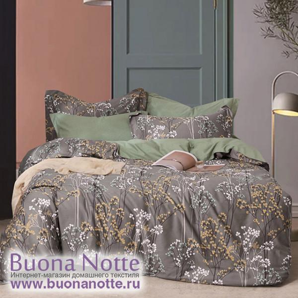 Комплект постельного белья Asabella 1507 (размер евро-плюс)