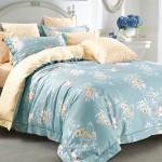 Комплект постельного белья Asabella 170 (размер евро)