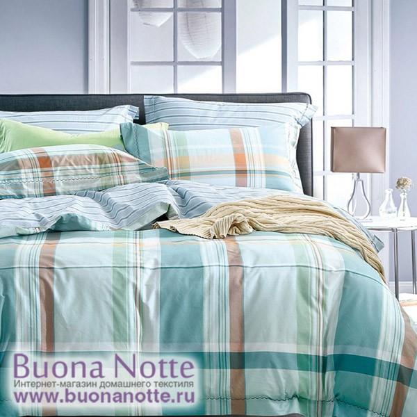 Комплект постельного белья Asabella 176 (размер евро)