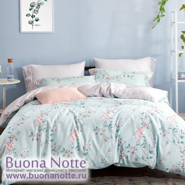 Комплект постельного белья Asabella 267 (размер евро)