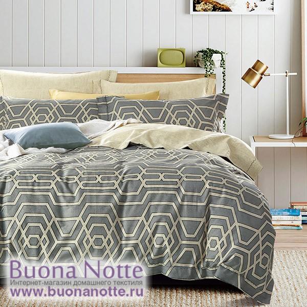 Комплект постельного белья Asabella 276 (размер евро)