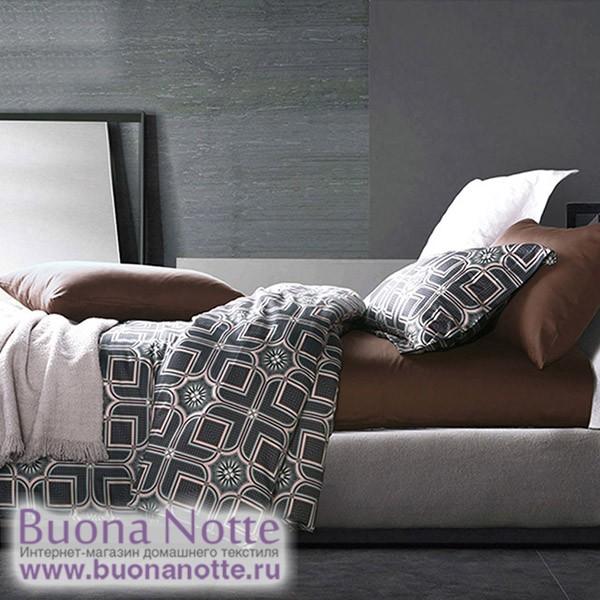 Комплект постельного белья Asabella 424 (размер евро)