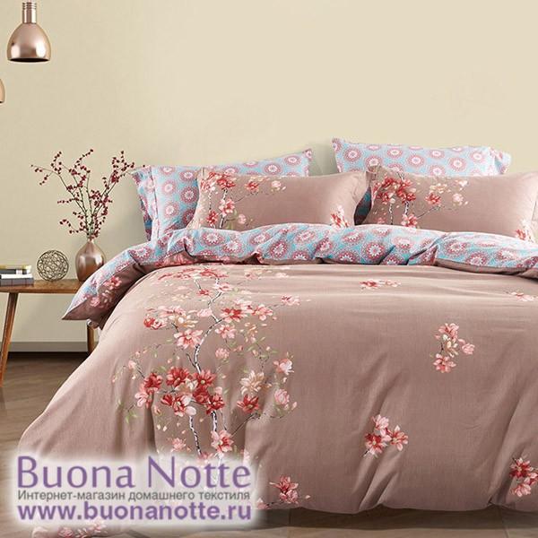 Комплект постельного белья Asabella 497 (размер евро)