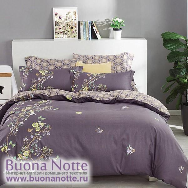 Комплект постельного белья Asabella 499 (размер евро)