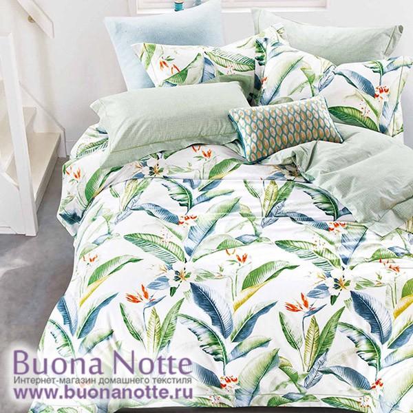 Комплект постельного белья Asabella 527 (размер евро)