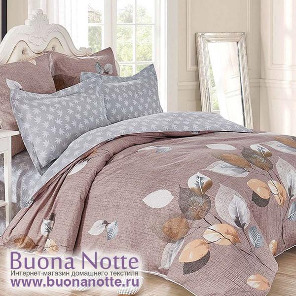 Комплект постельного белья Cleo Satin de Luxe 475-SK (размер Семейный)
