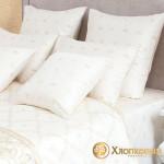 Постельное белье Хлопковый край сатин Флёр Де лис (размер 2-спальный)