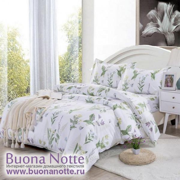 Комплект постельного белья Valtery AP-16 (размер 1,5-спальный)