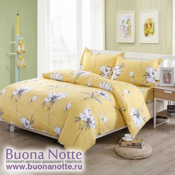 Комплект постельного белья Valtery AP-18 (размер 2-спальный)