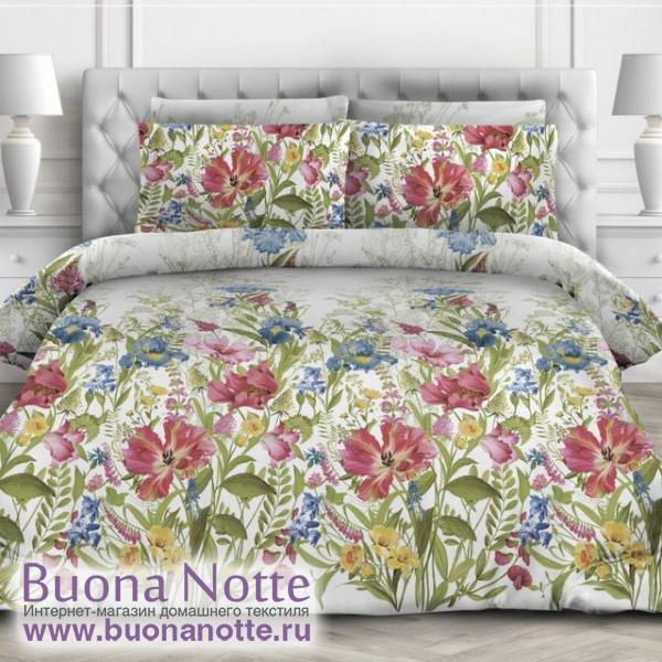 Комплект постельного белья Valtery AP-65 (размер 2-спальный)
