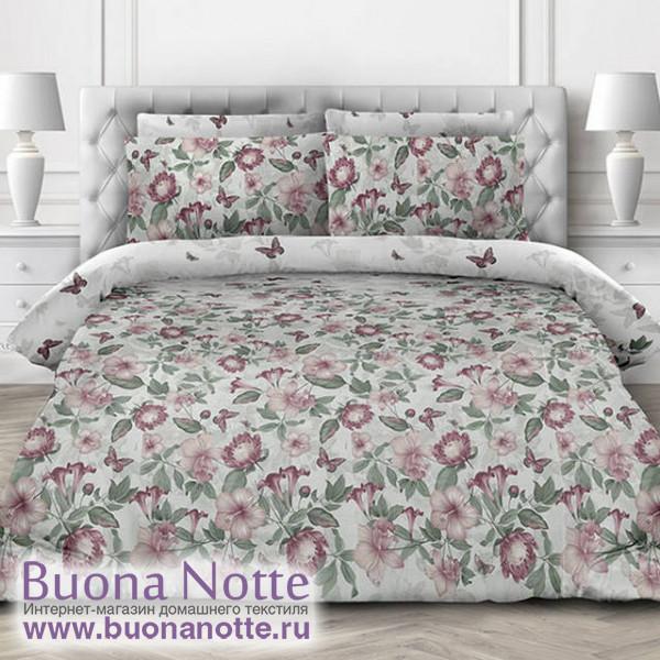 Комплект постельного белья Valtery AP-82 (размер 1,5-спальный)